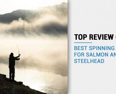 best steephead spinning reel for the money