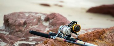 cheap fishing rod and reel combo