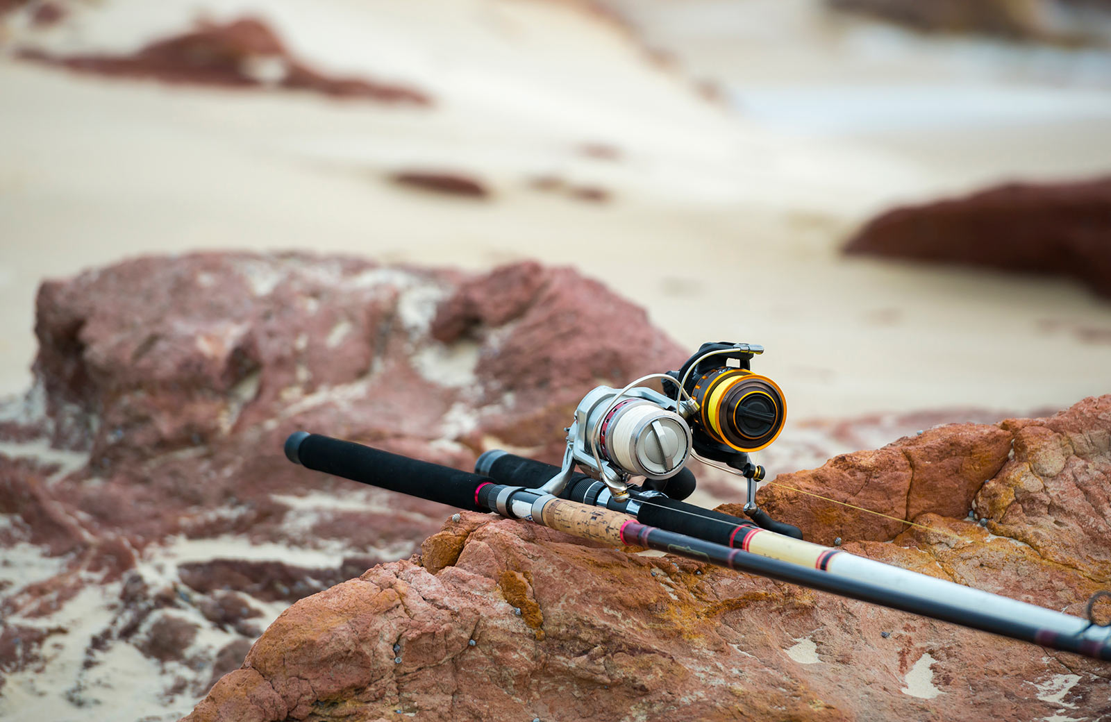 Top 5 Best Cheap fishing Rod and Reel combo in 2019