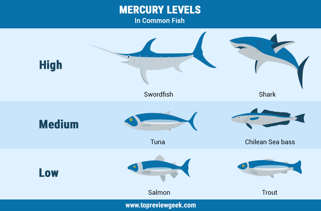 Mercury Levels