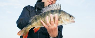 Bass fishing tips for summer